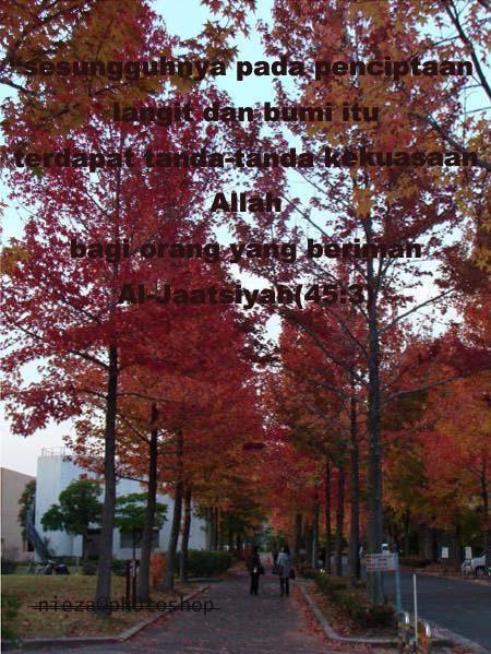gambar ni diambil di kawasan universiti aku ketika pertengah Nov 2008.Masa ni  musim luruh tapi daun-daun belum gugur lagi..Subhanallah cantiknya permandangan..